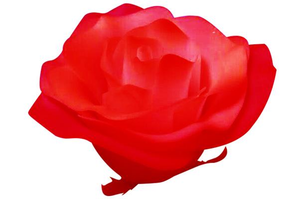 玫瑰花手板